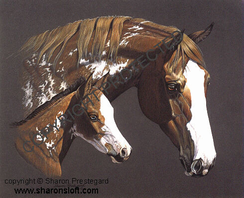 Paint Mare and Foal